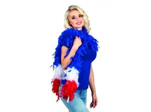Boa francesa de plumas
